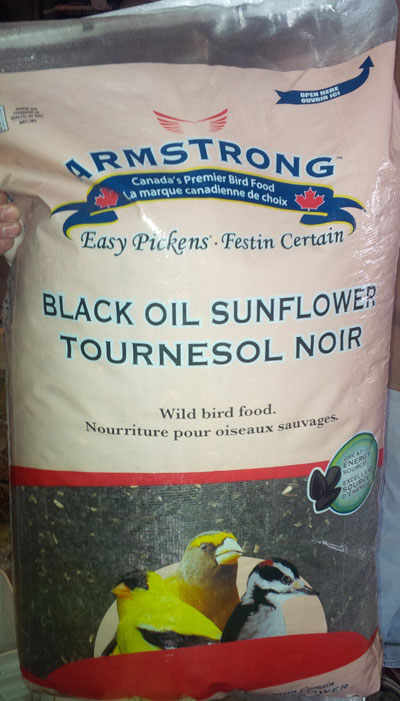 Black Oil Sunflower Seeds Image